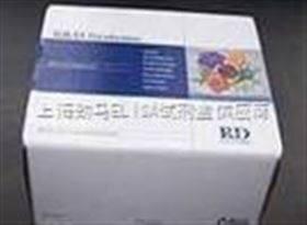 大鼠维生素B6试剂盒