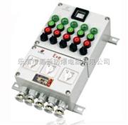 防爆控制箱BXK防爆阀门控制箱(IIB IIC e)市场售价