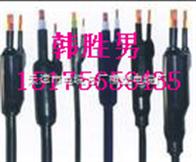 MY 矿用阻燃橡套分支电缆专卖