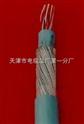 ZARVV通信设备电源线ZRVVR6-240平方