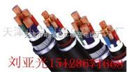 供应铠装电力电缆-YJV32