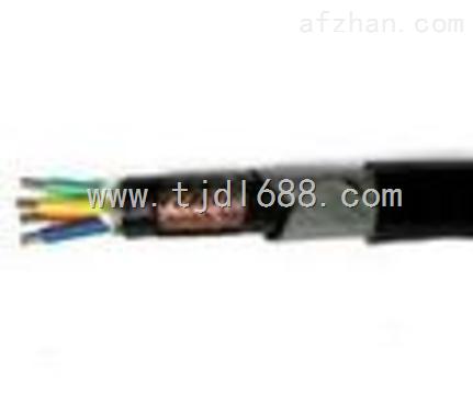 高质量/djyp2v22铜带编织屏蔽计算机电缆(使用范围)