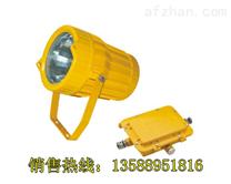 防爆投光灯 高亮度防爆投光灯BC9500