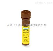 伯乐Bio-Rad 1632094100×pH3-10两性电解质