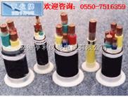 BPFFP-(洛阳)(BPFFP变频电缆)(徐州电力)