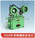 DGS20/127矿用双头应急照明灯