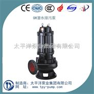 QW经济型单相潜水泵