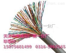 大对数通信电缆:WDZ-HYV50*2*0.4(低烟无卤阻燃)