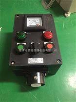 LCZ8030-A2B1K1防爆防腐操作柱