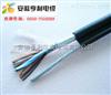 ZA-JYVPR22(ZA-JYVPR22信号屏蔽电缆)(工业科工)